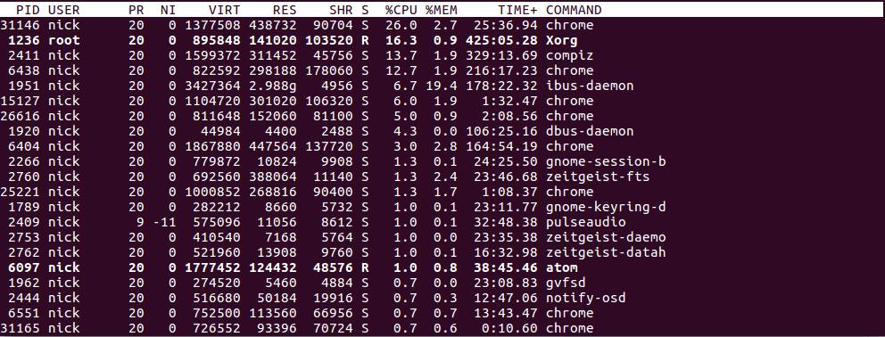 Debian Top Program Output