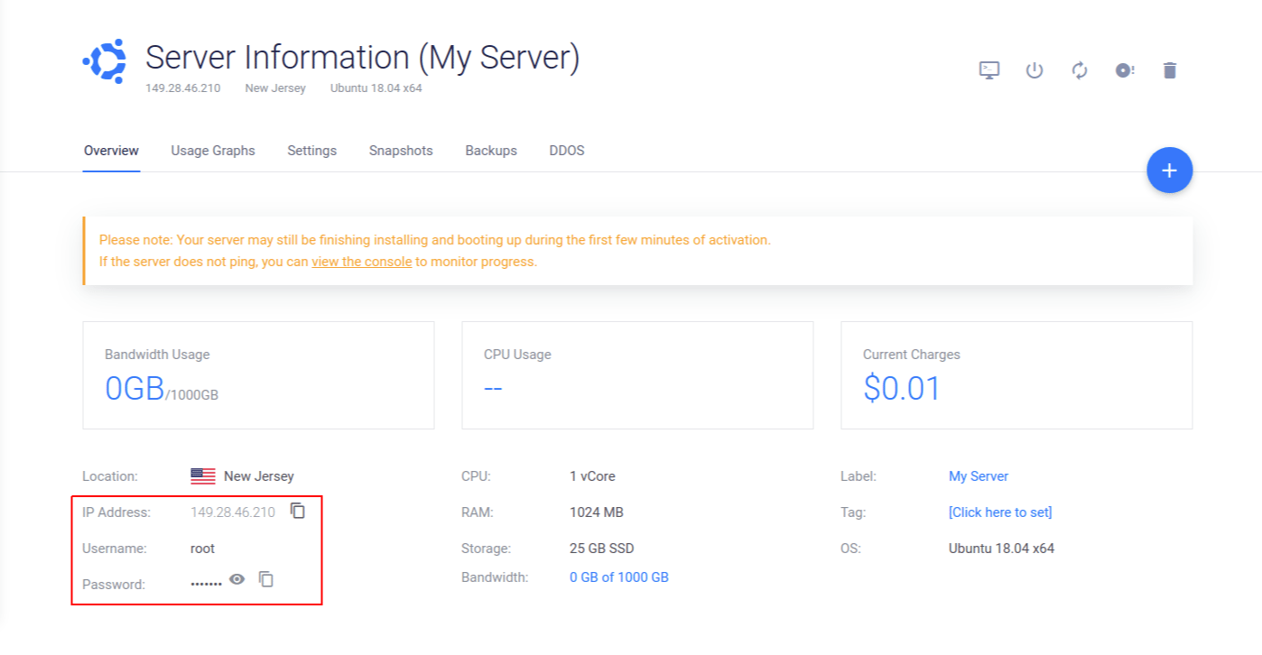 Vultr Deploy Server Options