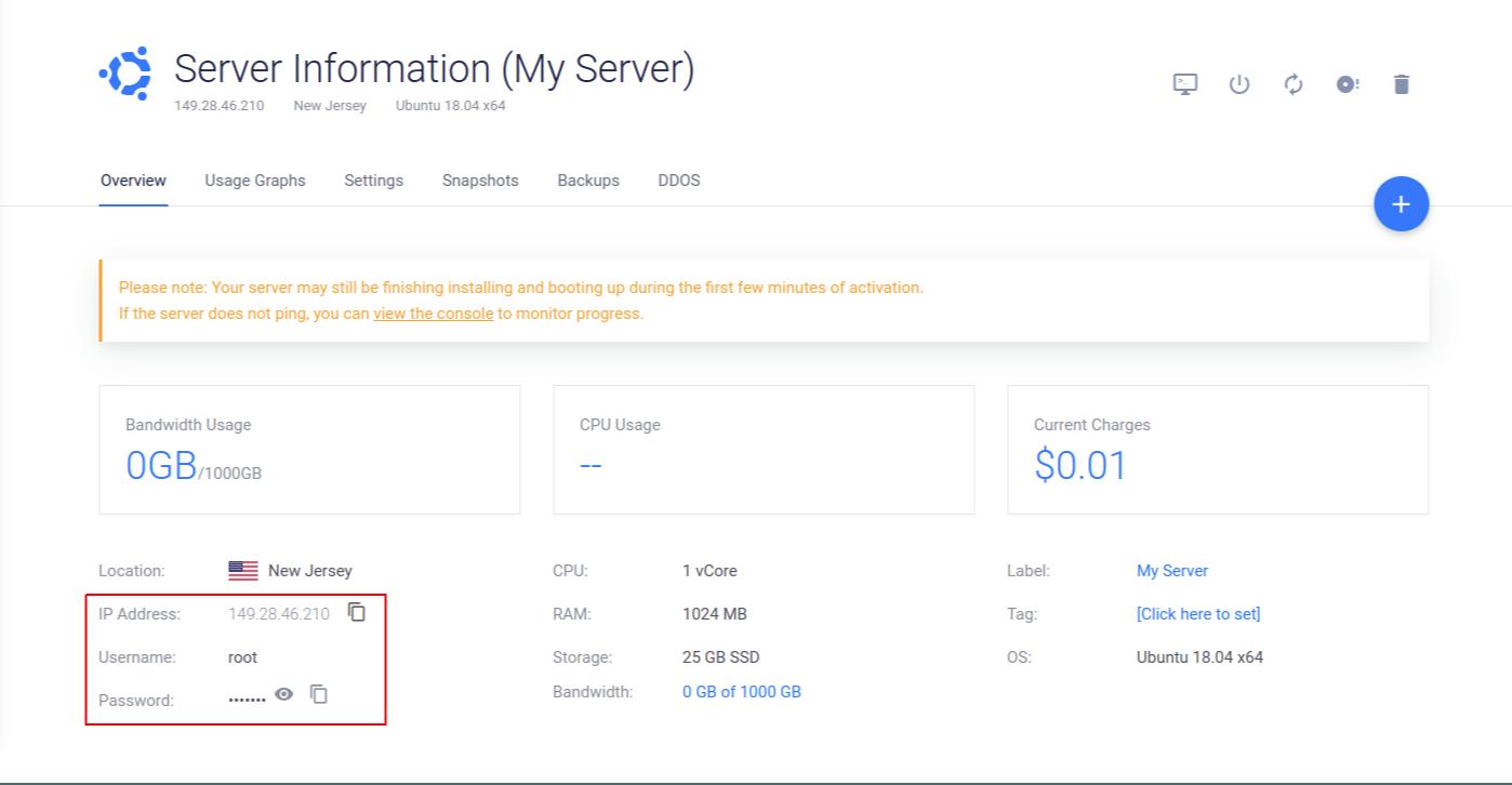 Vultr Server Info Page Screenshot